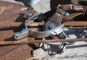 Uh-oh. I broke my friend's special spurs.